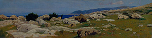95552-la-punta-del-Romito-vista-da-Castiglioncello